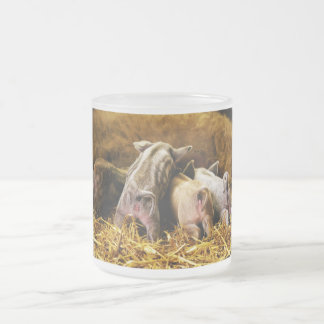 Four Baby Piglet Mangalitsa Hogs Showing Butts Frosted Glass Coffee Mug
