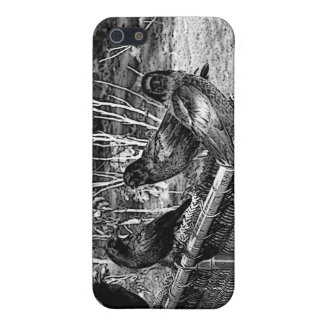 Four Black Crows Sitting on Fence iPhone 5 Cases