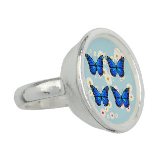 Four blue butterflies rings