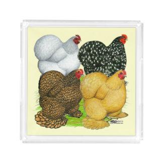 Four Cochin Hens Acrylic Tray