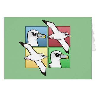Four Color Albatross Card