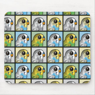 Four Color Budgies Mouse Pad