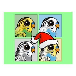 Four Color Xmas Budgies Postcard