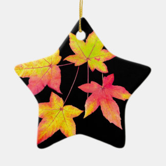 Four colored autumn leaves on black background ceramic star ornament