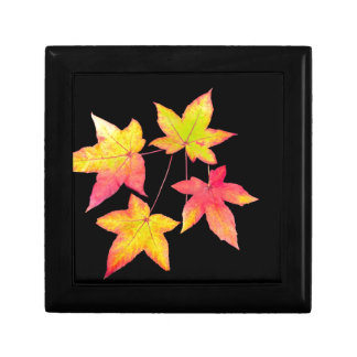 Four colored autumn leaves on black background gift box