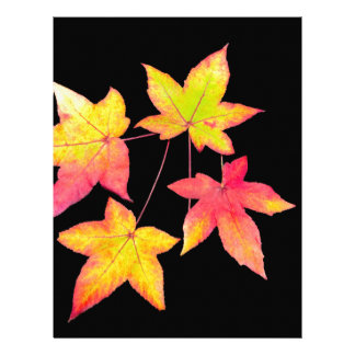 Four colored autumn leaves on black background letterhead