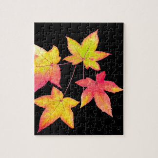 Four colored autumn leaves on black background puzzles
