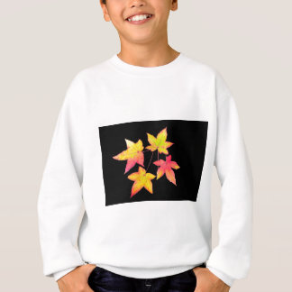 Four colored autumn leaves on black background sweatshirt
