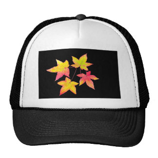 Four colored autumn leaves on black background trucker hat