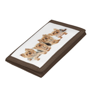 Four cute yorkies tri-fold wallet