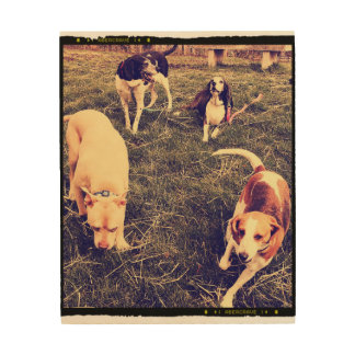 Four dogs in the park wood wall art