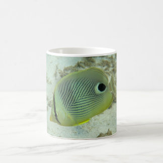 Four-eyed Butterfly fish Coffee Mug