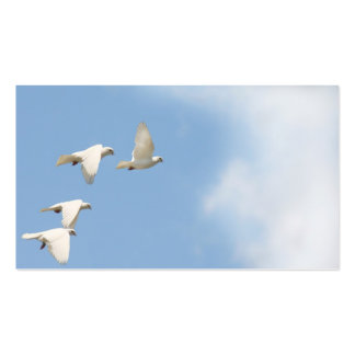 Four flying doves pack of standard business cards