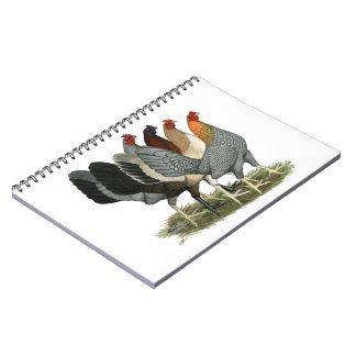 Four Gamefowl Hens Spiral Notebook
