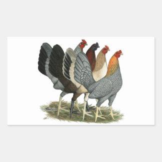 Four Gamefowl Hens Sticker