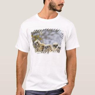 Four Great Horned Owl (Bubo Virginianus) Chicks T-Shirt