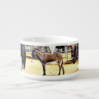 Four Horses and A Donkey Chili Bowl