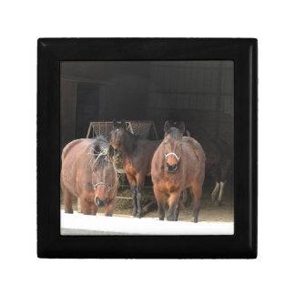 Four Horses Keepsake Box