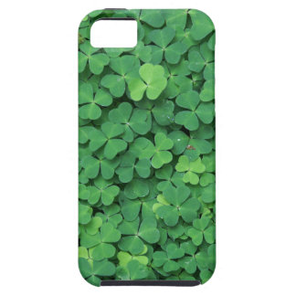 Four Leaf Clover iPhone 5 Cases