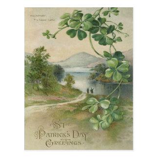 Four Leaf Clover Killarney Mountain Postcard