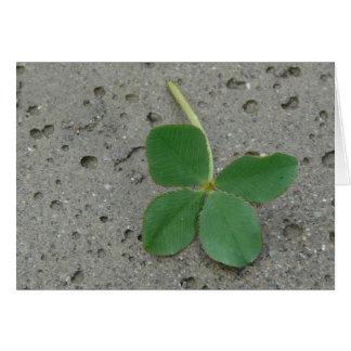Four Leaf Clover - Lucky Charm Card
