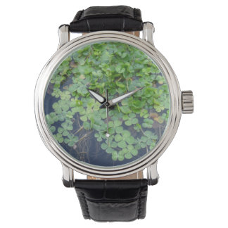 Four Leaf Clover Lucky Watch