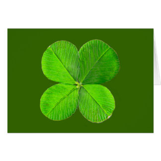Four Leaf Clover The MUSEUM Zazzle Gifts Card