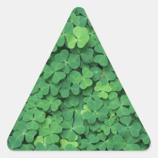 Four Leaf Clover Triangle Sticker