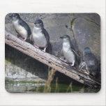 Four Little Penguins Mousepad