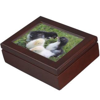 four lovely chicks keepsake box