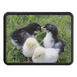 four lovely chicks trailer hitch cover
