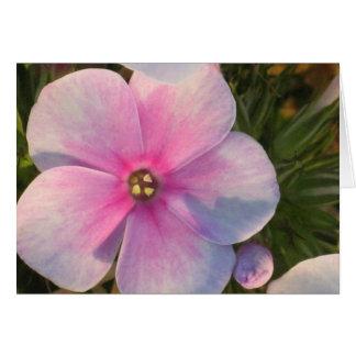 Four O'Clock Flower Card
