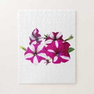 Four Red and White Petunias Jigsaw Puzzle