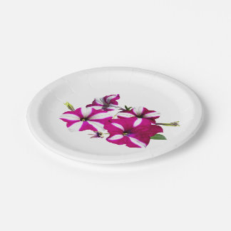 Four Red and White Petunias Paper Plate