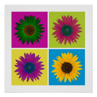 Four Sunflowers in Color Poster