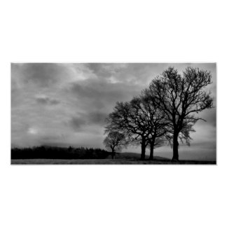 Four Trees Poster
