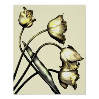 Four tulips No 2 Poster