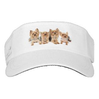 Four yorkies visor