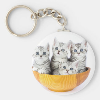 Four young cats sitting in wooden bowl on white keychain