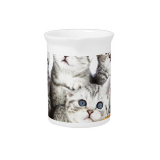 Four young cats sitting in wooden bowl on white pitcher