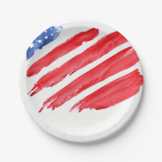 fourth of July colorful barbecue 7 Inch Paper Plate