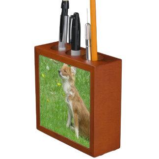 fox-7 desk organizer