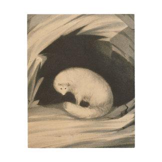 Fox arctique, de 'récit d'un deuxième voyage dedan canevas en bois