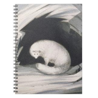 Fox arctique, de 'récit d'un deuxième voyage dedan carnets