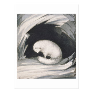 Fox arctique, de 'récit d'un deuxième voyage dedan carte postale