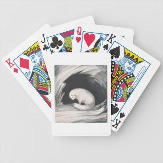 Fox arctique, de 'récit d'un deuxième voyage dedan jeux de poker