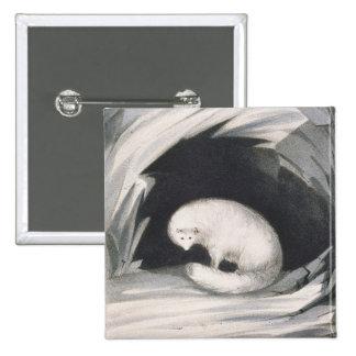 Fox arctique, de 'récit d'un deuxième voyage dedan macaron carré 5 cm
