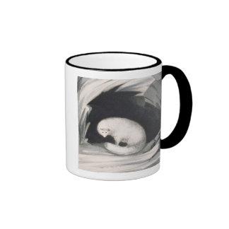 Fox arctique, de 'récit d'un deuxième voyage dedan tasses