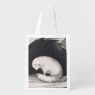Fox arctique, de 'récit d'un deuxième voyage dedan sacs d'épicerie réutilisables