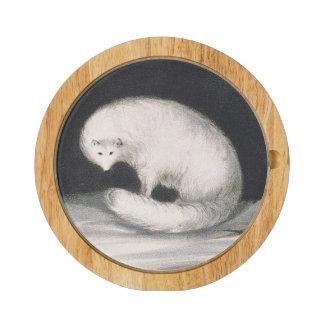 Fox arctique, de 'récit d'un deuxième voyage plateau à fromage rectangulaire